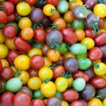 Cherry_Tomato_Mix_(6033999022)